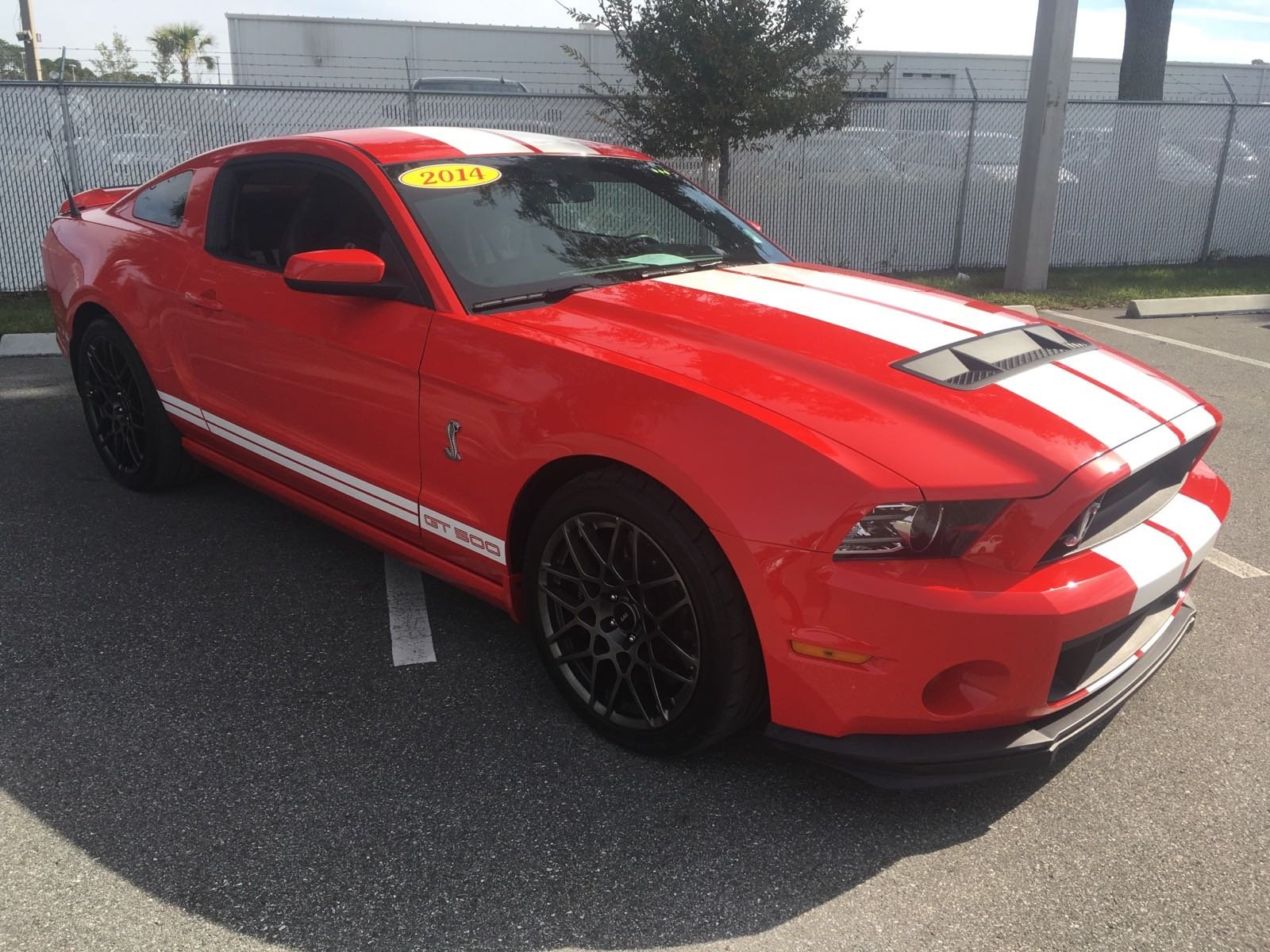 Pre Owned 2014 Ford Mustang Shelby GT500 2dr Car in Jacksonville